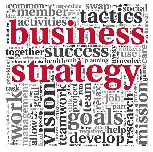 mms-business-strategy650